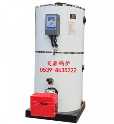 燃气立式锅炉